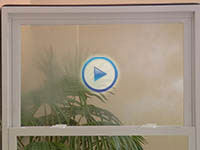 window world : : Seal Failure Video